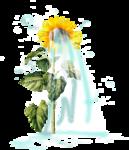 «AD_Sunflower_summer»  0_8c763_b478fdbd_S