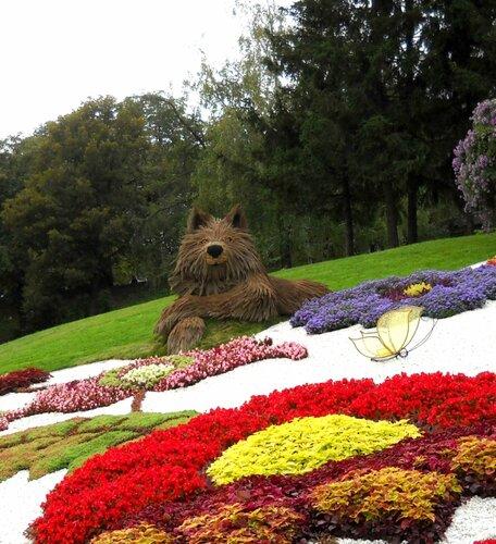 Сказочная выставка цветов в Киеве