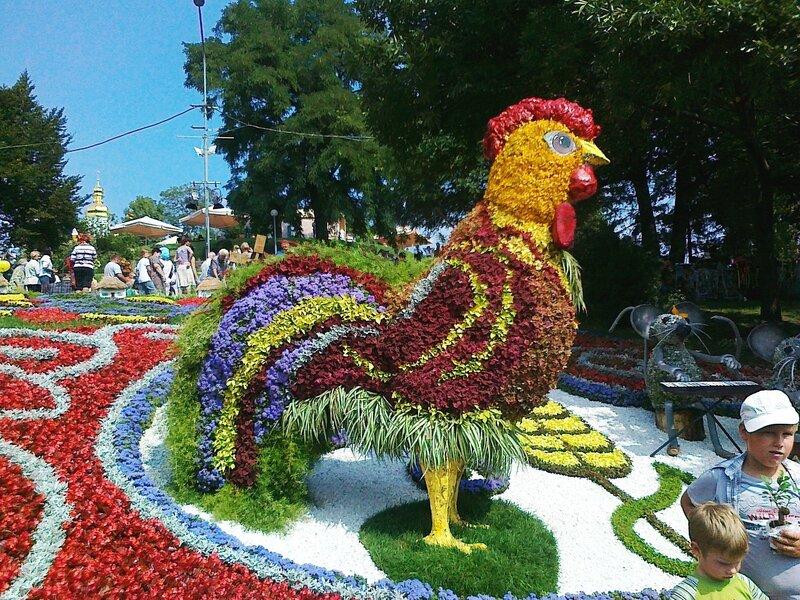 Выставка цветов на Певческом поле
