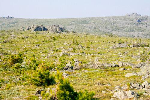 Плато горы Третий Бугор