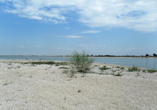 На песчаных берегах, июль 2012