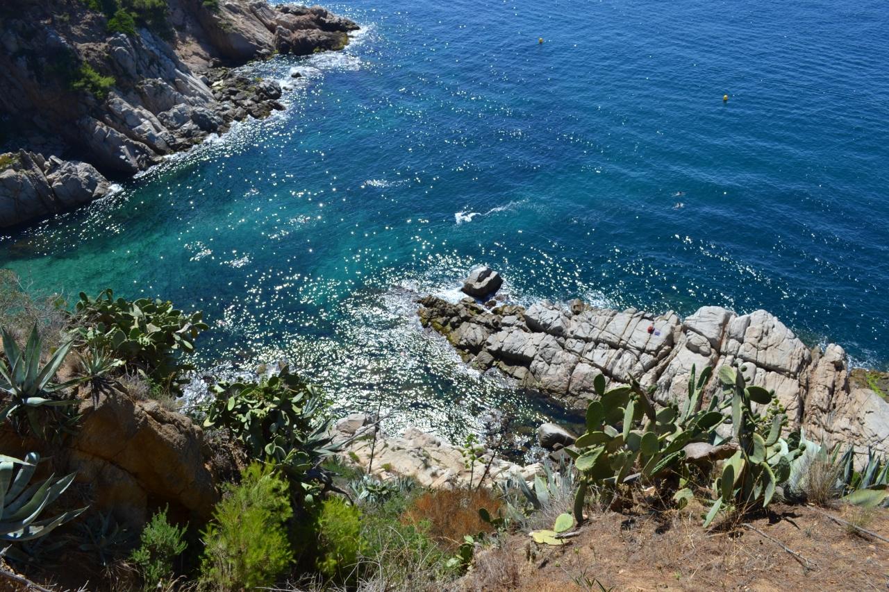 Скалистые берега
