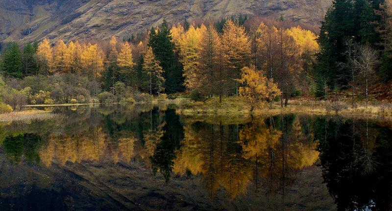 Красивые фотографии природы из Flickr 0 156ba3 c70abf25 XL