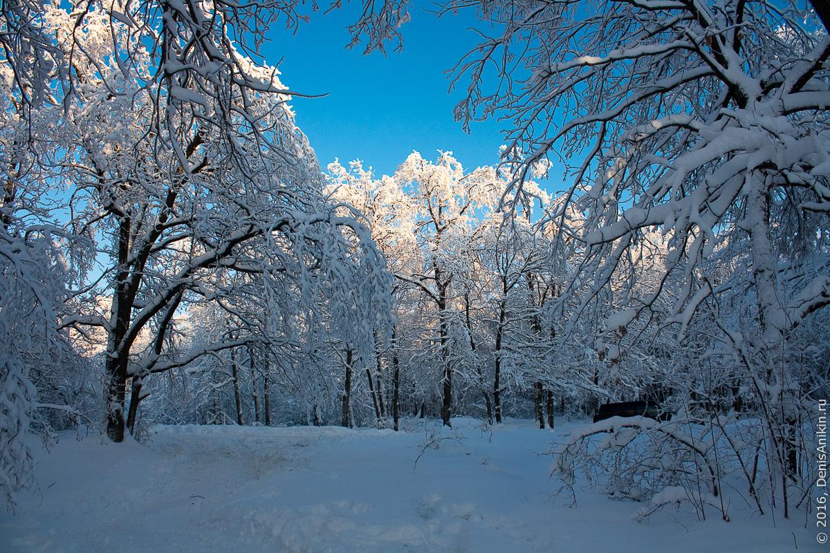 Зима на кумысной поляне 5