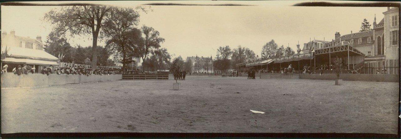 Орлеан. Выставка лошадей