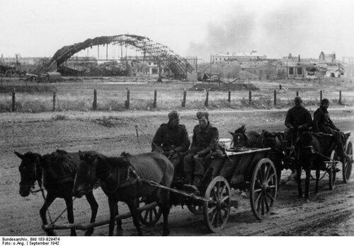 Russland, Kampf um Stalingrad, Grenadiere