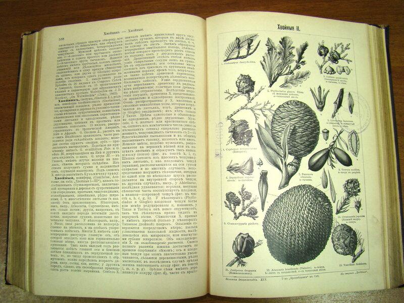 Энциклопедия или толковый словарь наук искусств и ремёсел