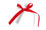 natali_strawberry_ribbon3-sh.png