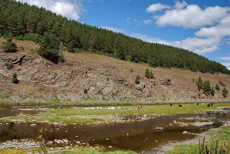 Белая река 9