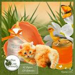 «Рыжий котенок» 0_8c67d_ac51399_S