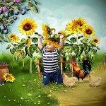«AD_Sunflower_summer»  0_8c739_881a9cbd_S
