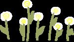 «AD_Sunflower_summer»  0_8c7cf_ac4278b_S
