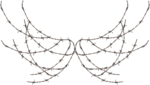 cvd inner storm barbed wire wings 2.png