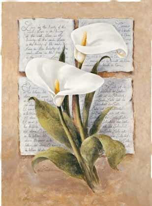 """Схемы вышивки  """"цветы каллы """" - Схемы вышивки по тегам - Портал  """"Вышивка крестом """" ."""