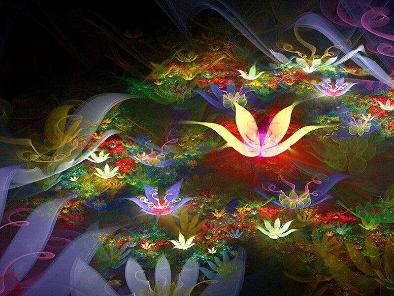 Картинки магического цветка