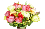цветы (44).png