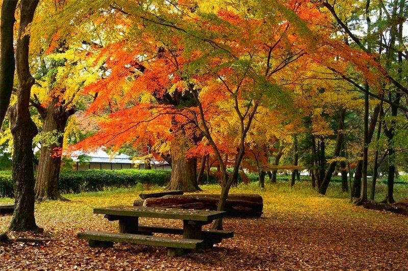 – традиционный японский пейзаж