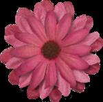 Lilas_Old-Garden_elmt (36).png