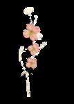 Palvinka_FlowerAdventure_cluster5b.png