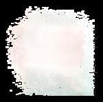 Palvinka_FlowerAdventure_overlay.png