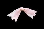 Palvinka_FlowerAdventure_ribbon5.png