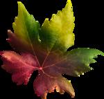 emka_AutumnTwilight_element20.png
