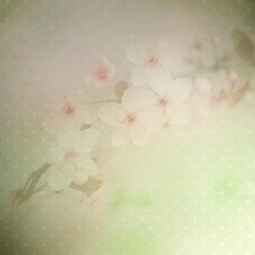«Marta_FloweringCherries» 0_902bf_71c21787_L