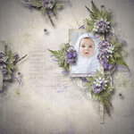 «Lavender Time» 0_90bc0_bb31fa5d_S