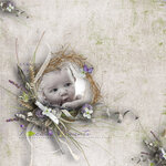 «Lavender Time» 0_90bc7_e47c6976_S