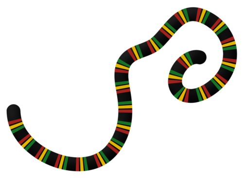 «reggaes world» 0_92058_156d81c1_L