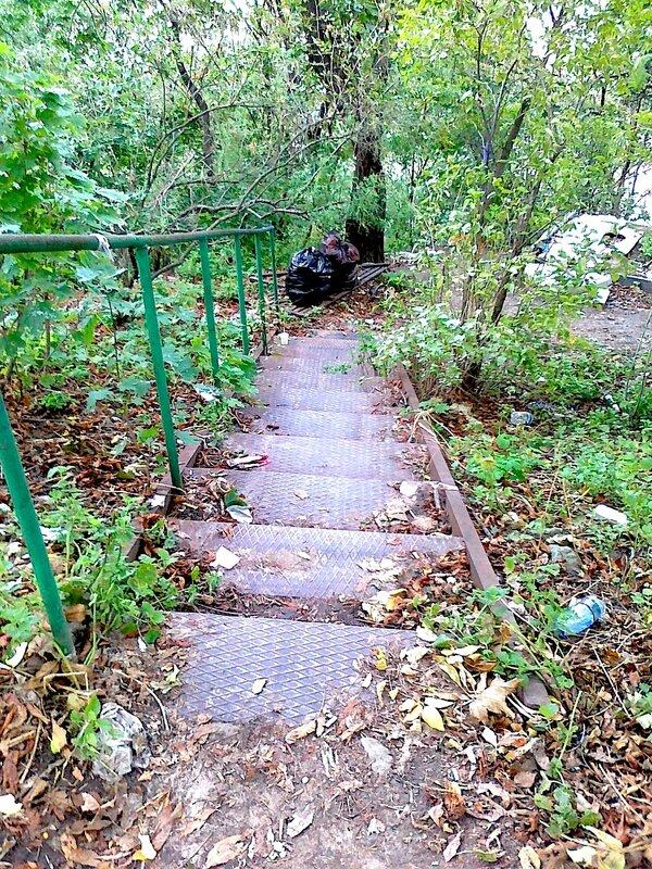 Лестница возле Замка Ричарда