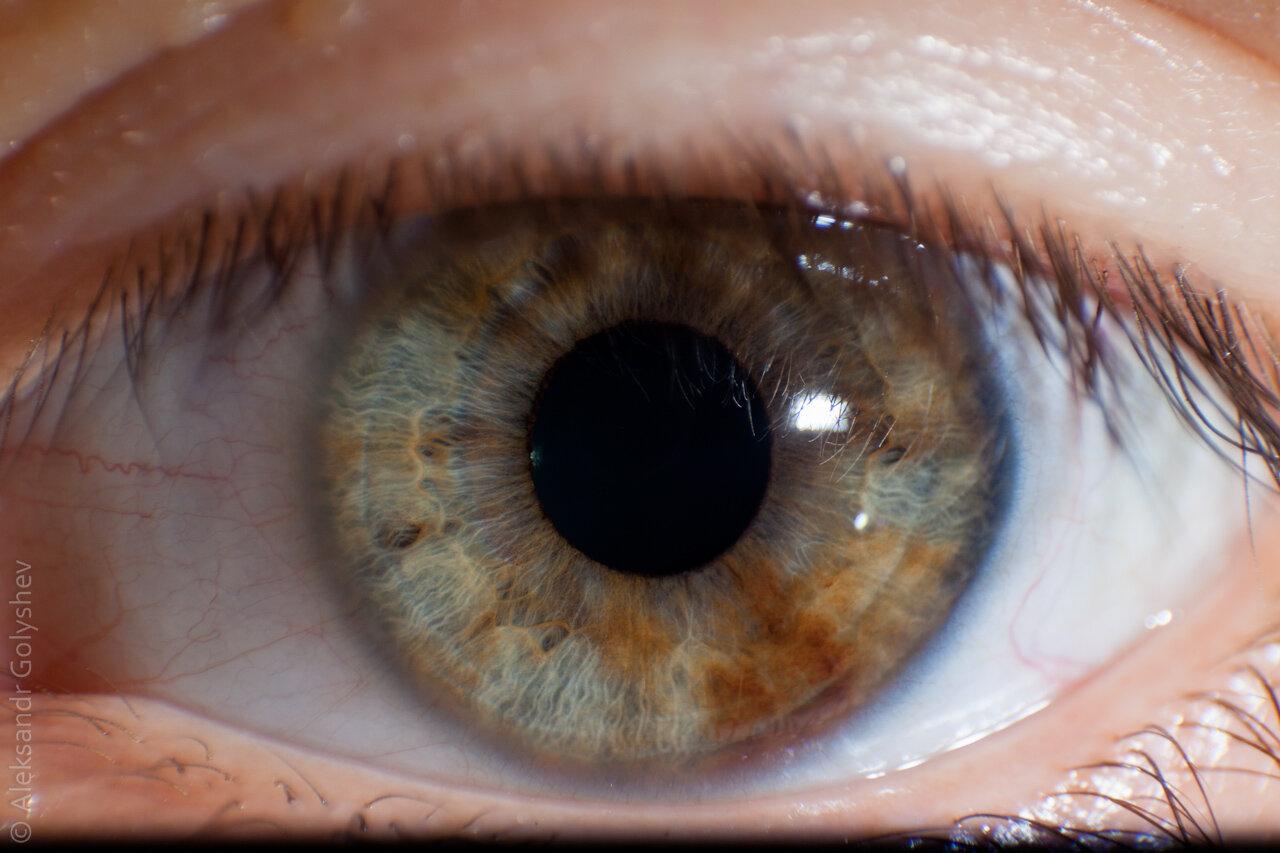 Макросъемка глаз