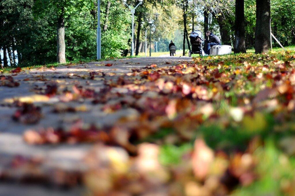 Осень в в Орехове-Борисове