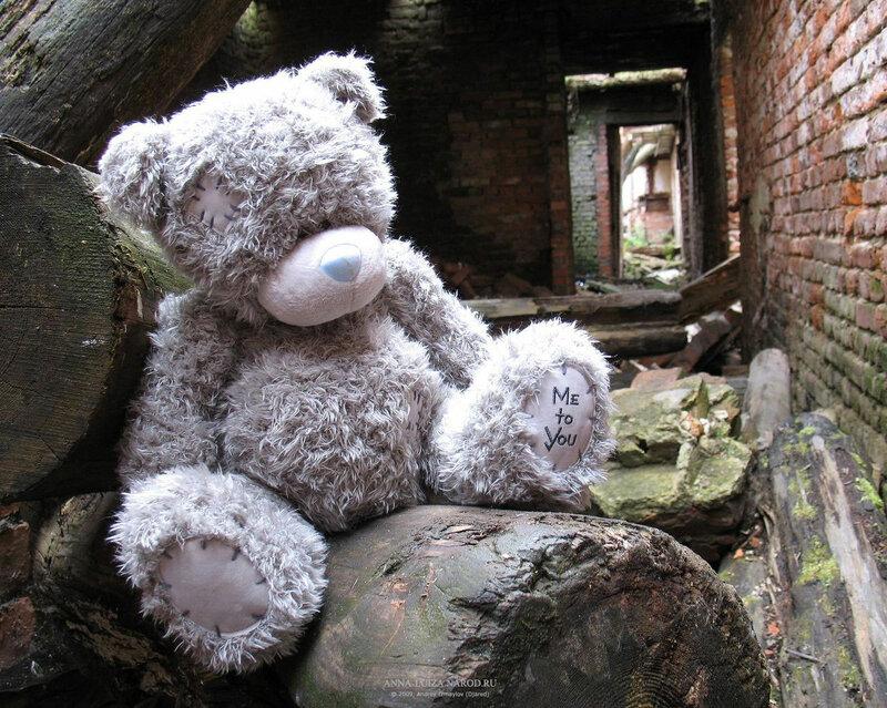Картинки на телефон медвежата 6
