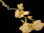 Lilas_Old-Garden_elmt (95).png