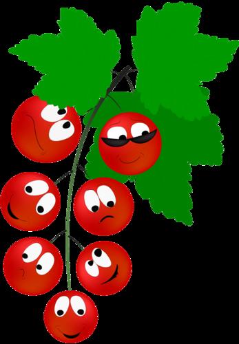 Картинка яблоко с листочком