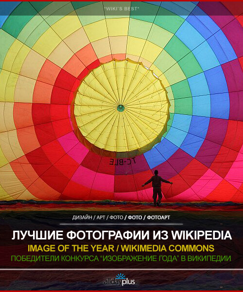"""Лучшие фотографии ресурса Википедия. """"Изображение года"""". 6-й конкурс от Wikimedia Commons. 30 фото."""