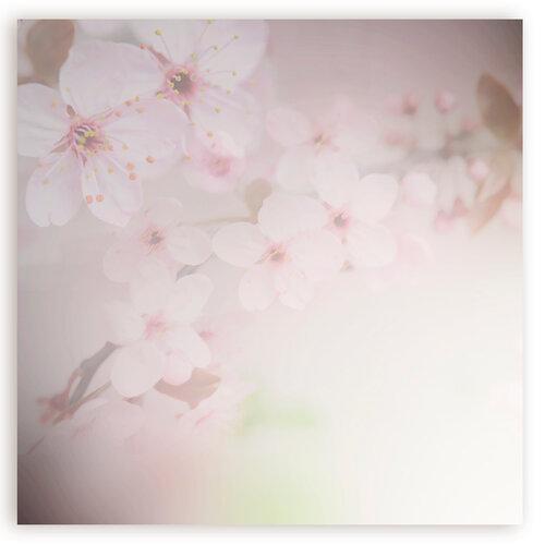 «Marta_FloweringCherries» 0_902c0_14dc5197_L