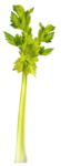 Скрап набор - Рататуй (Ratatouille) 0_91244_8b21ee0b_S