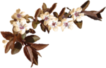 feli_nb_flowers branch2.png