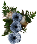 «Denim And Daisies» 0_94270_9c84df7a_S