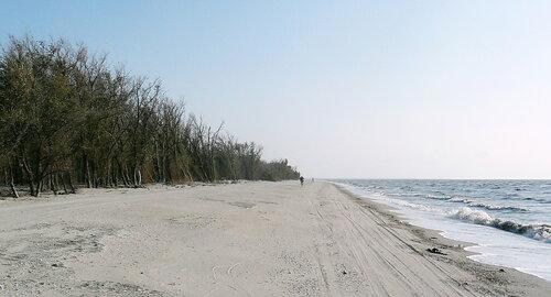 Сентябрь 2012, побережье Азовского моря