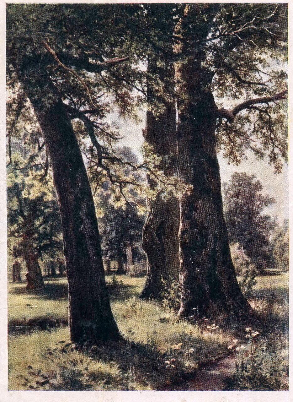 Шишкин И.И. Шишкин. Дубы. 1887 г.