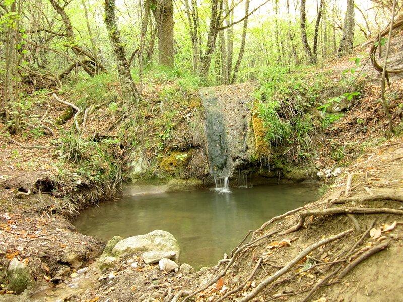Русло реки Сотера