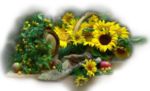 цветы (165).png