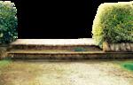 ldavi-blossombees-gardensteps1.png