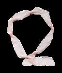 Palvinka_FlowerAdventure_ribbon6.png