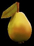 Delph_forestfruits_el8.png