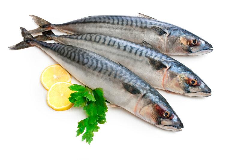 рыба толстолобик купить