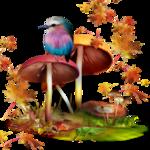 mushroom 10.png